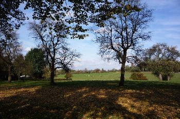 July64: Herbstlandschaft