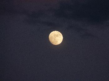 Bright Moon ..
