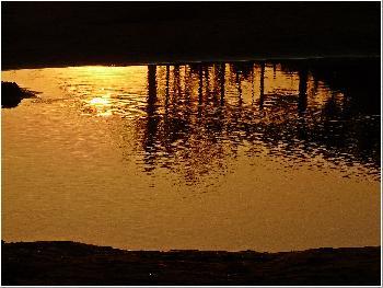 Spiegel der Nacht ...