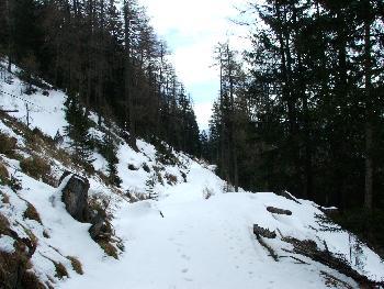 9. Der Weg wurde immer schwieriger, der Schnee immer dicker
