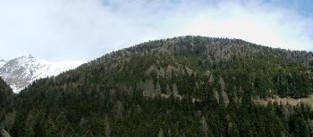 15. Panorama über dem Gols (1700 m. N.n)