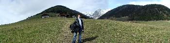 17. Owlet auf einer Alpenwiese vor (unserem) Gipfel