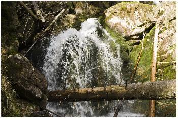 Rießlochwasserfall Impressionen 4
