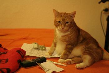 Mein Finanzberater :)