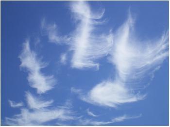 Federwolken