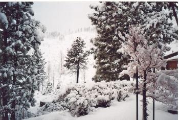 Carson City im Schnee