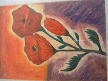 3 Lieblingsblüten