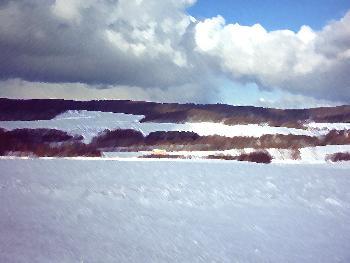 Schneeidylle mit Hügel